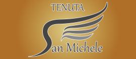 Tenuta San Michele a Moncucco